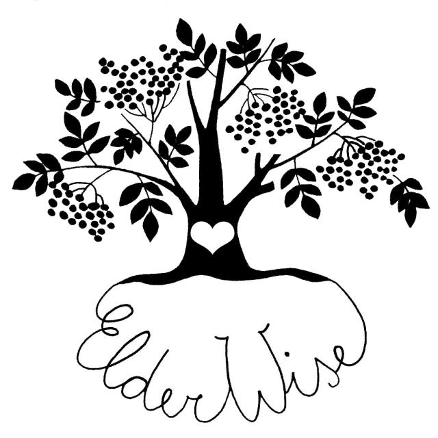 ElderWise - AS